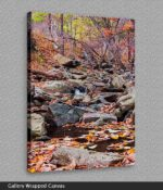 canvas print of creek near wintergreen