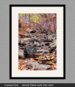 framed print of creek near wintergreen