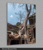 angkor wat trees print