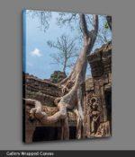 angkor wat trees canvas