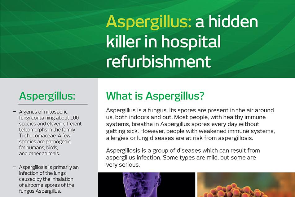 Understanding Aspergillus