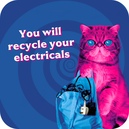 HypnoCat: You will recycle your electricals