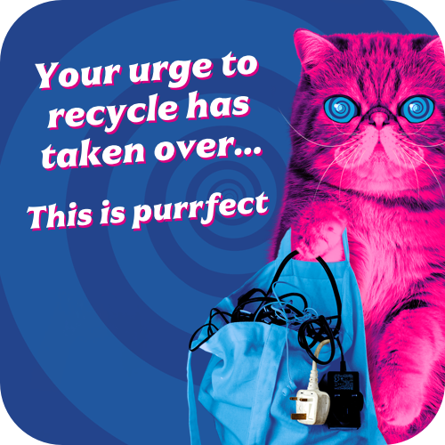Illustration of Hypnocat with bag of electricals for recycling