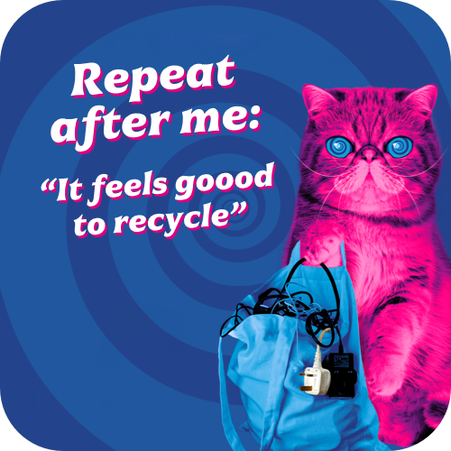 HypnoCat with bag of electricals saying 'Repeat after me: It feels goood to recycle'