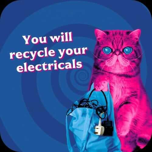 hypnocat says you will recycle your electricals
