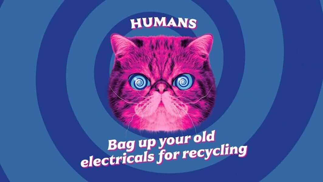 HypnoCat saying 'Human: Bag up your old electricals for recycling'