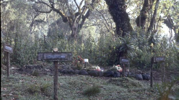 La tombe de Diane Fossey, derrière celle de Digit, son gorille préféré