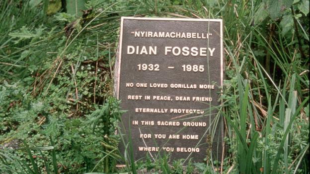 La tombe de Diane Fossey dans les montagnes du Rwanda. Elle a été enterrée à coté de Digit
