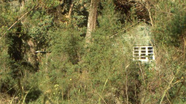 La première cabine de Diane Fossey dans les montagnes
