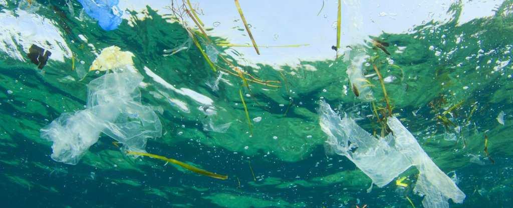 On aura plus de plastique que de poissons dans nos océans en 2050