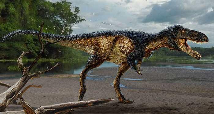 Timurlengia euotica est une nouvelle espèce de Tyrannosaure de la taille d'un cheval qui explique les grands tyrannosaures que nous connaissons.