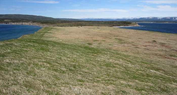 Découverte possible d'un second village Viking à Point Rosee en Amérique du Nord dans la région de Terre-Neuve-et-Labrador