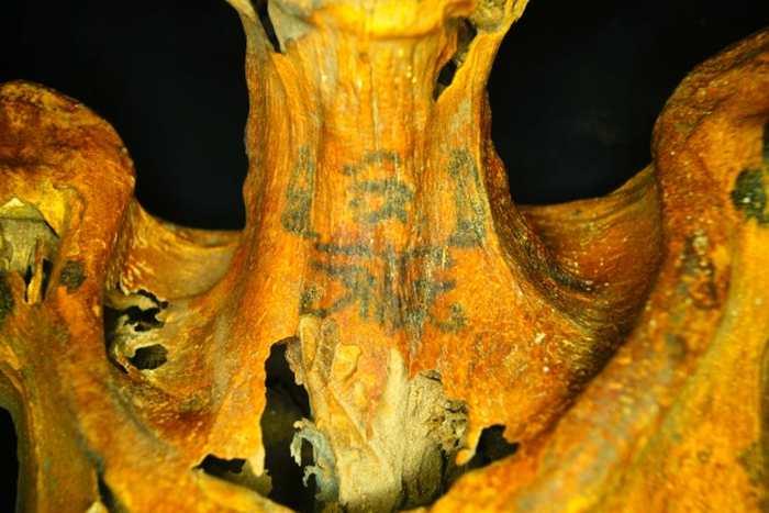 Une momie de l'Égypte antique possède de nombreux tatouages avec des symboles sacrés.