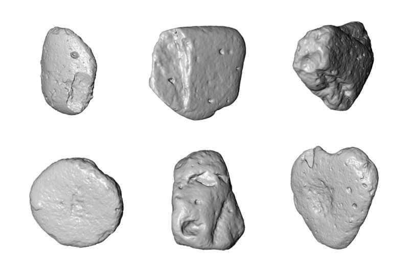 Les outils en pierre utilisés par les macaques