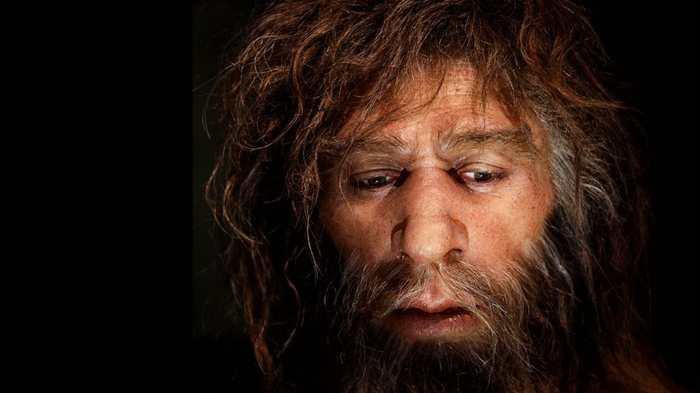 Une nouvelle analyse d'ossements dans une grotte belge montre que les Néandertal européens étaient cannibales