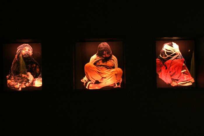 Des bactéries intestinales à l'intérieur de momies datant de 1 000 ans de l'Empire inca sont résistantes à la plupart des antibiotiques modernes alors que les antibiotiques datent seulement de 100 ans.