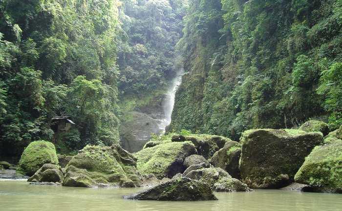 L'île de Luçon en Indonésie possède la plus grande concentration de mammifères uniques au monde.