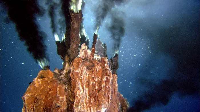 Un microbe, qu'on peut considérer comme notre ancêtre commun le plus ancien, se nourrissait principalement de gaz d'hydrogène dans un monde où l'oxygène était quasi absent.