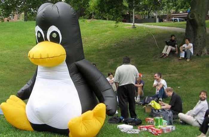 En mode c'était mieux avant, une utilisatrice de Linux nous raconte le chemin totalement pourri de la technologie actuelle.