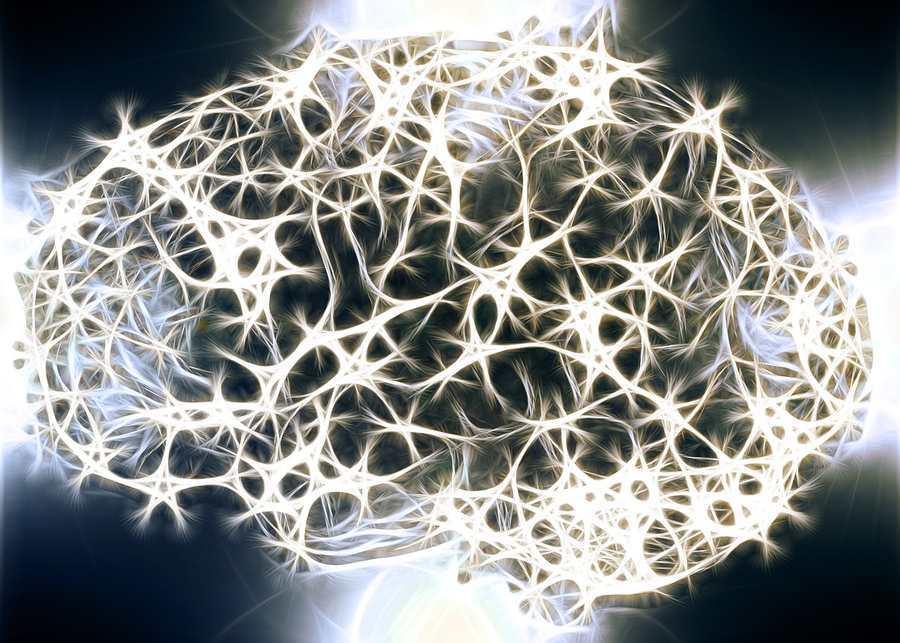 Une nouvelle hypothèse suggère que les états quantiques fragiles pourraient exister pendant plusieurs heures ou même des jours dans notre cerveau. Et des expériences pourraient bientôt tester cette hypothèse.