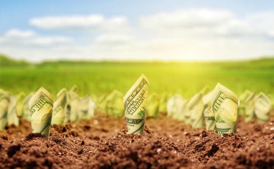 Le concept de capital naturel est une idiotie sans oublier qu'il est assez dangereux. Mettre un prix sur la nature revient à dire que le capitalisme peut trouver des solutions aux problèmes d'une complexité inouïe de la nature.