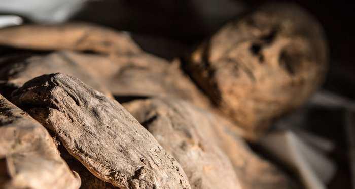 Une momie enfant, enterrée dans une crypte en Lituanie, possède la preuve génétique la plus ancienne de la variole.