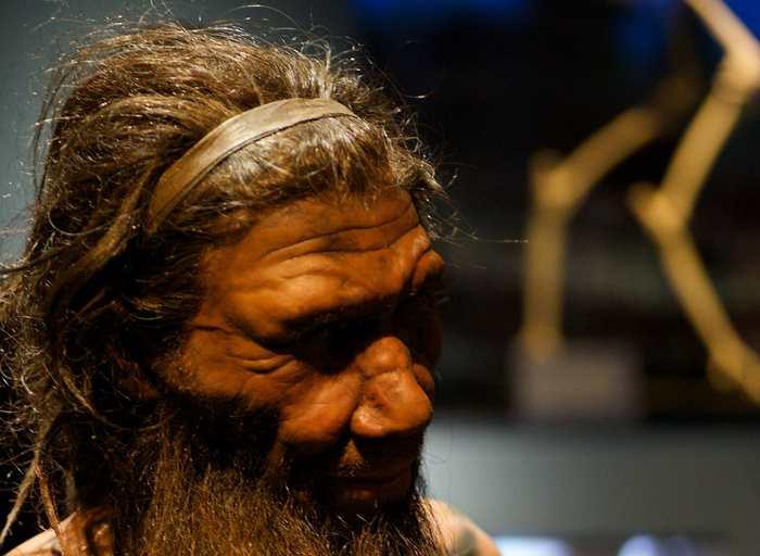 Une recherche suggère que l'ADN de l'homme du Néandertal continue à contribuer à notre expression génique en influençant ainsi certaines caractéristiques de l'homme moderne telles que la hauteur ou la vulnérabilité à la schizophrénie. Mais les auteurs restent prudents dans leurs affirmations.