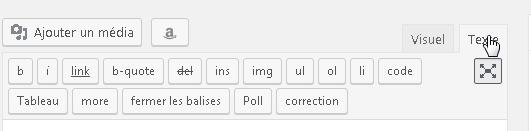 Comment ajouter manuelle les balises de Schema.org dans WordPress ?