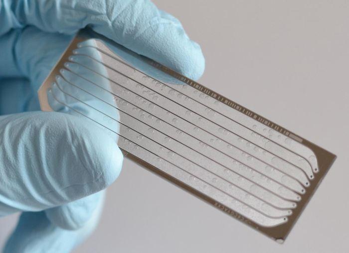 Le coeur de cette nouvelle technique développée par Finkelstein et ses collègues pour détecter les interactions entre CRISPR et les segments d'ADN hors cible est une lame de séquençage génomique de prochaine génération