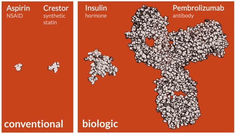 La différence entre un médicament classique et un biomédicament - Crédit : Ian Haydon, CC BY-ND
