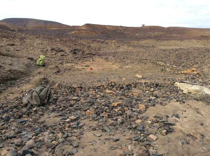 Le site où on a découvert Nyanzapithecus alesi (marqué par le drapeau rouge) - Crédit : Isaiah Nengo.