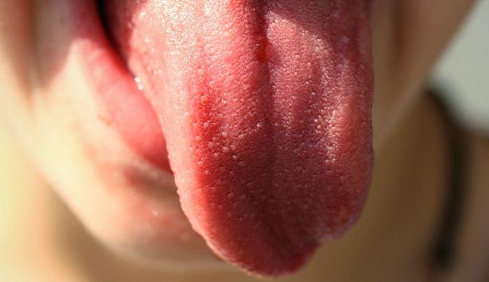 Une recherche suggère des hypothèses très intéressantes sur la manière dont notre langue communique les saveurs à notre cerveau.