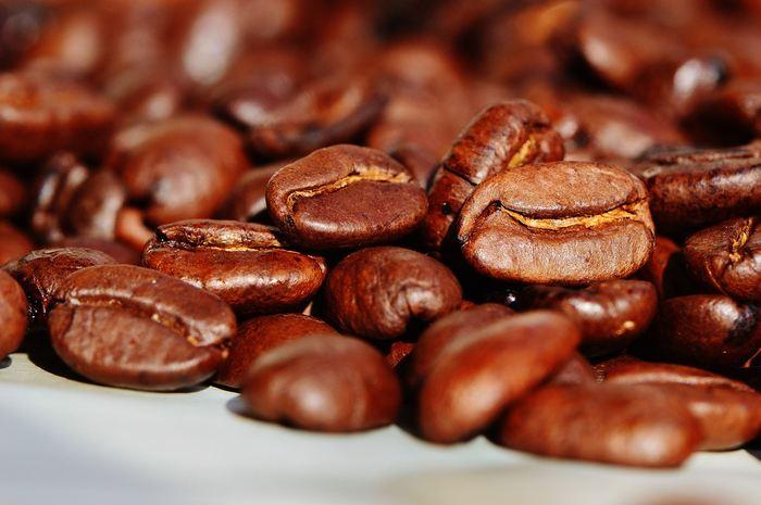 L'Amérique latine est la plus grande productrice de café au monde, mais les modèles montrent une baisse considérable de la viabilité du café dans cette région en 2050. Toutefois, on pourrait compenser certaines pertes en améliorant les conditions des abeilles qui sont importantes pour la pollinisation. Et même s'il y a des pertes, des régions comme le Mexique, la Colombie ou le Costa Rica vont devenir propices à l'agriculture du café dans le futur.