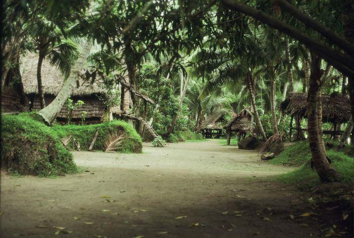 Un village typique sur le fleuve Sepik en Papouasie-Nouvelle-Guinée - Crédit : Stephen J. Oppenheimer