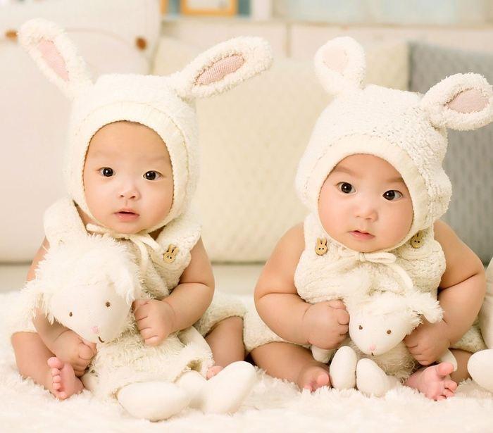 Le Prix Ig Nobel 2017 de cognition sur des jumeaux qui ne peuvent pas différencier leur propre visage