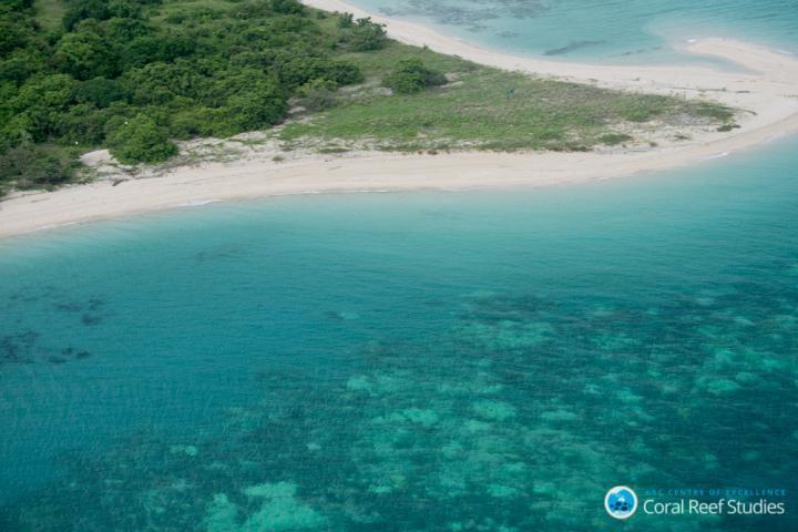 Le blanchissement de la Grande Barrière de Corail devient progressivement une nouvelle norme - Crédit  : ARC CoE for Coral Reef Studies/ Terry Hughes