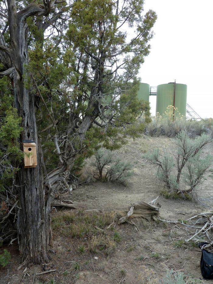 Des compresseurs à gaz à coté d'un nichoir à oiseaux - Crédit : Nathan Kleist