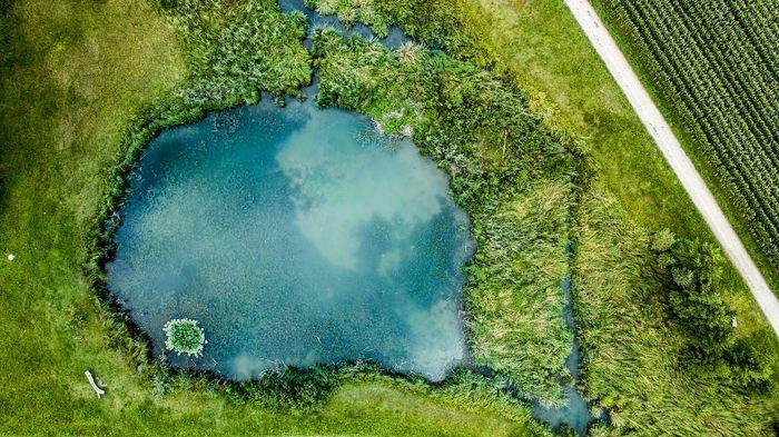 Les lacs peu profonds dans les paysages produiront davantage de méthane à cause de la combinaison du réchauffement climatique et de l'enrichissement des nutriments. Et cette production de méthane sera considérable dans les modèles étudiés.