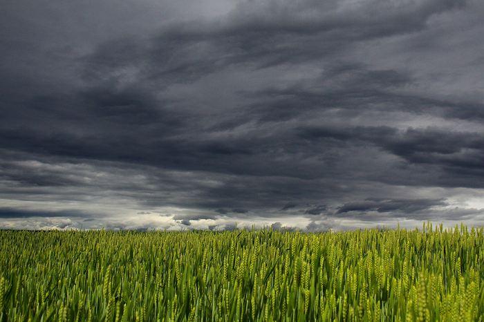 Une recherche suggère que les aérosols, des particules minuscules inférieures à 50 nanomètres, peuvent contribuer au développement de tempêtes puissantes. Ces particules, connues pour leur rôle sur le climat, avaient négligé dans la formation des tempêtes dans les régions industrielles.