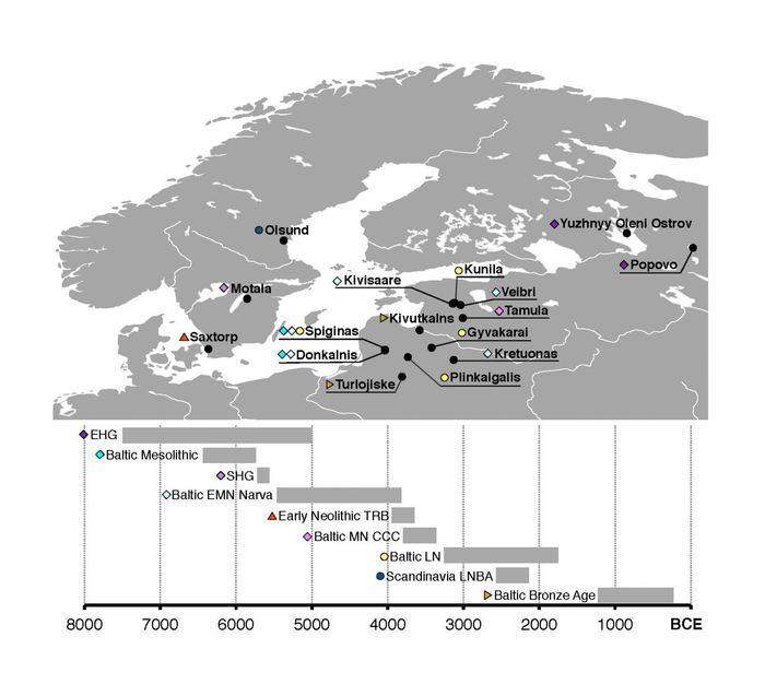 La carte génétique de la mer Baltique - Crédit : Mittnik et al. The Genetic Prehistory of the Baltic Sea Region. Nature Communications (2018).
