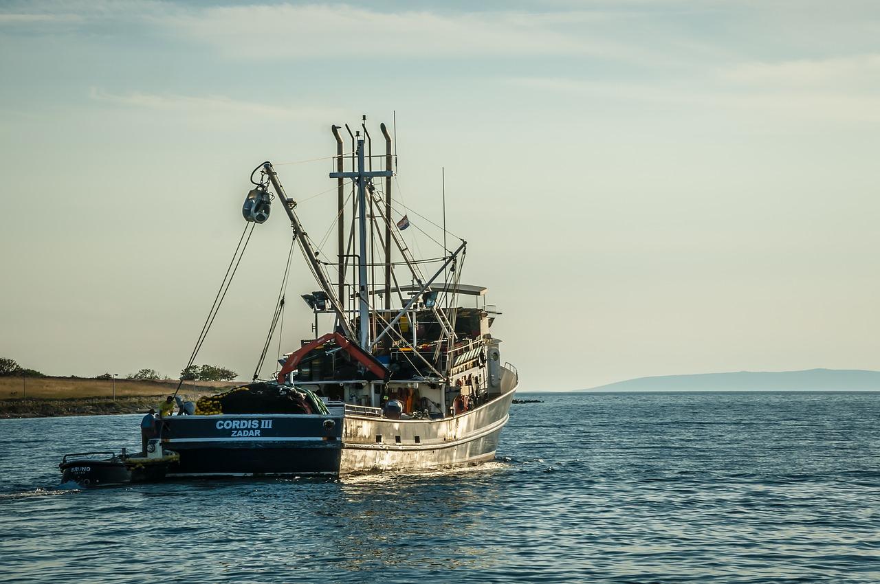 Une étude suggère que la pêche industrielle est pratiquée dans plus de 55 % des océans. La Chine, l'Espagne, Taiwan, le Japon et la Corée du Sud représentent plus de 85 % de toute la pêche.