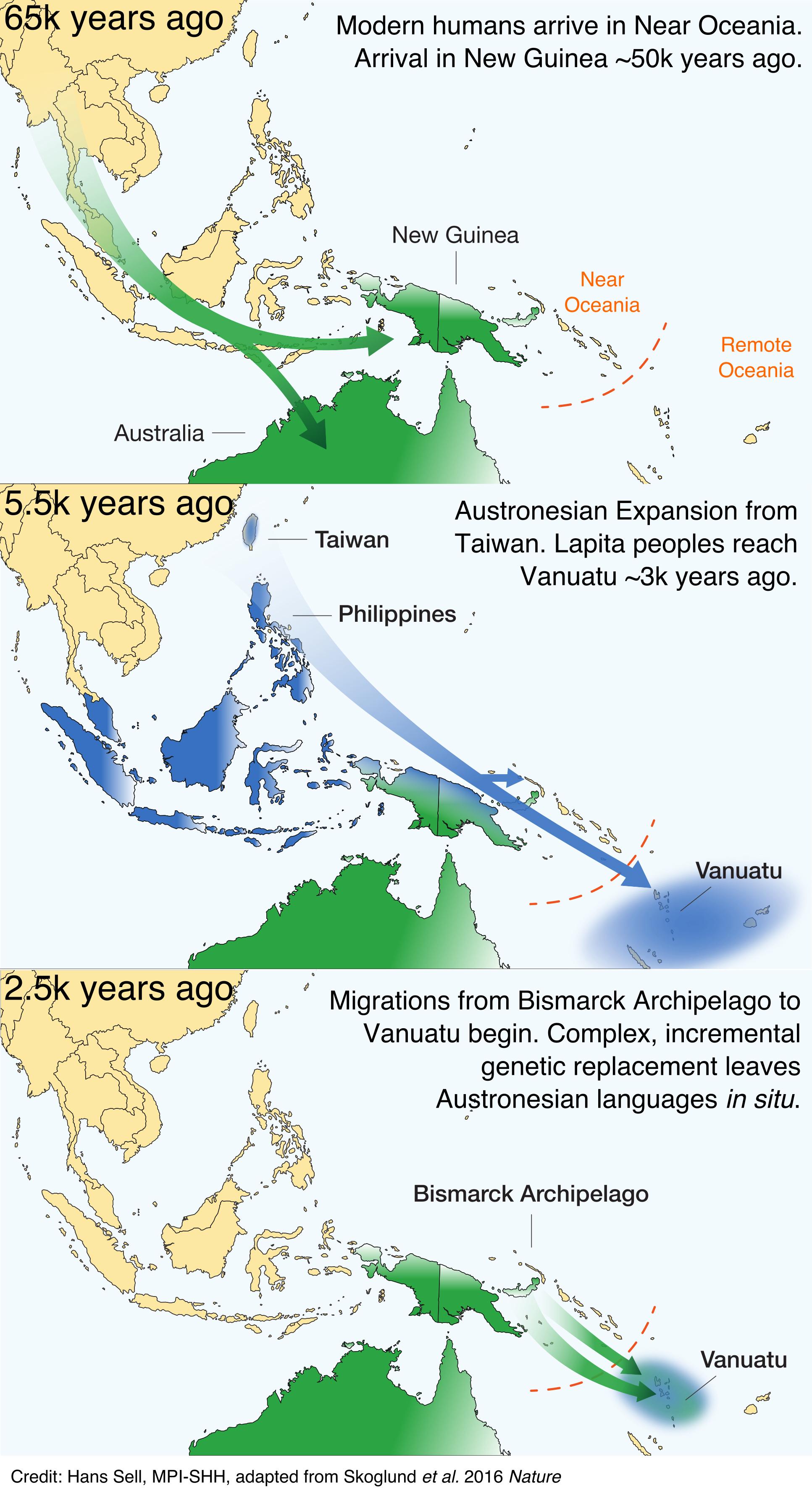 Les cartes montrant les migrations dans la région. La dernière carte en bas montre les migrations révélées par cette étude - Crédit : Hans Sell, adapté depuis Skoglund et al. Genomic insights into the peopling of the Southwest Pacific. Nature (2016).