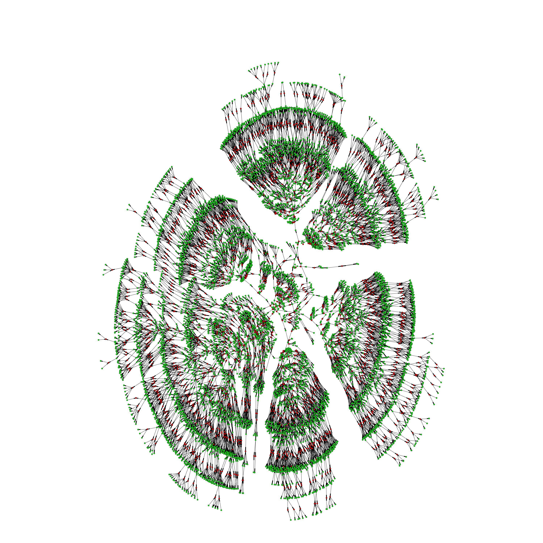 Dans l'image ci-dessus, un arbre généalogique de 6 000 personnes nettoyé et organisé selon la théorie des graphes. Des individus s'étendant sur 7 générations sont en vert tandis que leurs liens matrimoniaux sont en rouge - Crédit : Columbia University
