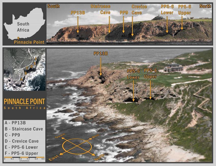 L'équipe de recherche fait des excavations dans les grottes à Pinnacle Point en Afrique du sud depuis 20 ans. Les tessons de verre provenant du Mont Toba ont été découverts au site PP5-6 - Crédit : Erich Fisher
