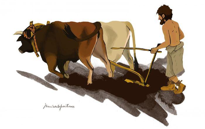 Illustration d'un agriculteur du néolithique - Crédit : Maria de la Fuente (Maria de la Fuente Archaeological Illustrations)