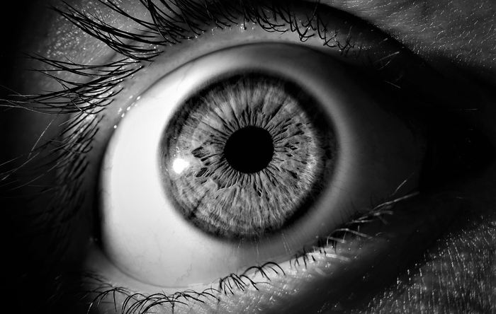 Une étude sur un essai clinique de phase 1 montre des résultats encourageants sur l'amélioration de la vision chez 2 patients atteints de dégénérescence maculaire liée à l'âge. Même si l'essai est très limité, les résultats montrent le potentiel de ce type de thérapie.