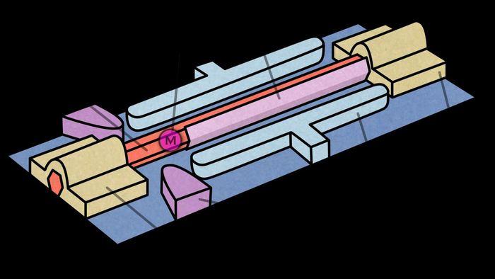 La quantification parfaite de la conductivité des particules de Majoranas est la preuve finale de leur existence - Crédit : TU Delft