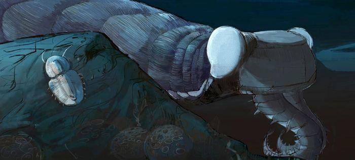 Une reconstruction d'un prédateur et euarthropode Anomalocaris canadensis selon des fossiles du Burgess Shale au Canada - Crédit : Natalia Patkiewicz