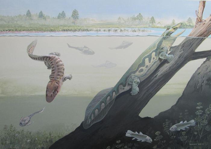 Une reconstruction complète de Tutusius et d'Umzantsia - Crédit : Maggie Newman