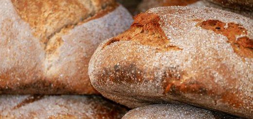 Dans un désert dans la Jordanie, les chercheurs rapportent la découverte de restes de pain datant de 14 400 ans, soit 4 000 ans avant l'agriculture. Cela suggère que le processus de fabrication du pain qui a incité à cultiver les céréales et donc, à lancer la révolution agricole.